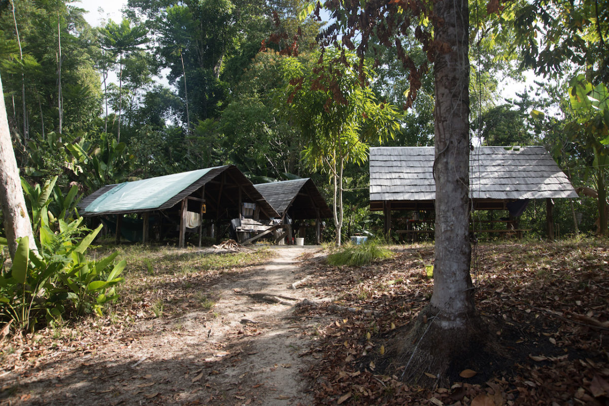 Jungle camp, Suriname, River