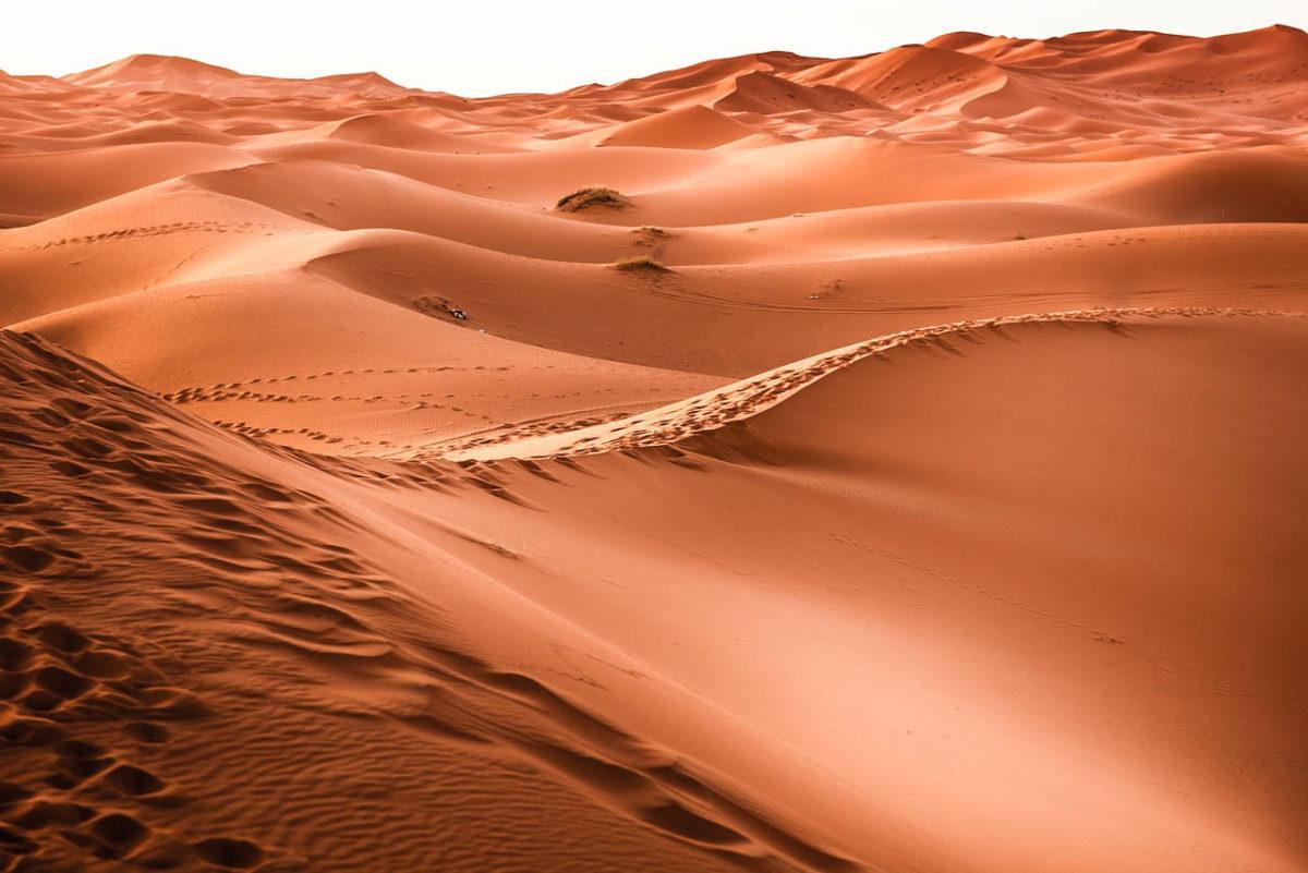 Wüstenlandschaft Marokko Merzouga